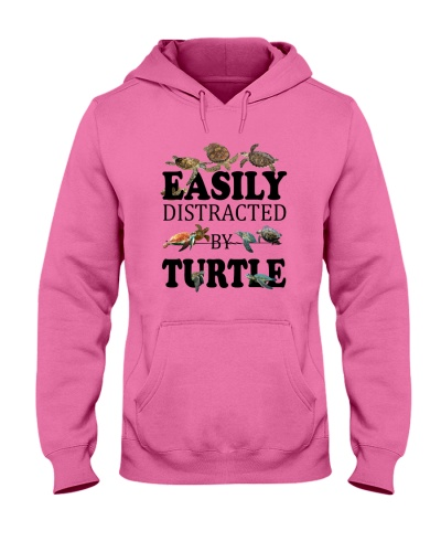 Easily distracted by Turtles