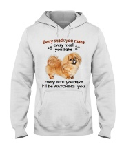LIMITED EDITION - NOT FOUND IN STORES Hooded Sweatshirt thumbnail