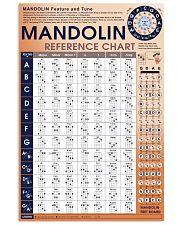 Mandolin 11x17 Poster front