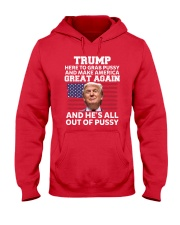 Trump grab-america-by-the-pussy 2017 Hooded Sweatshirt thumbnail