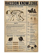 Raccoon Knowledge 11x17 Poster front