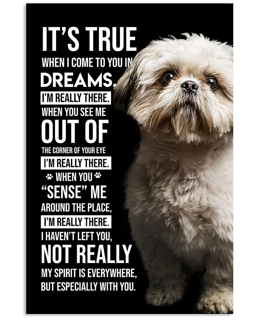 Shih Tzu I'm Really There  11x17 Poster