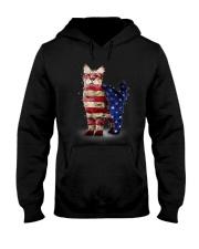 Cat America Hooded Sweatshirt thumbnail