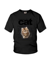 Cat Anatomy Youth T-Shirt tile