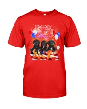 USA Great Dane Classic T-Shirt front