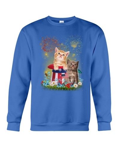 Cat Firework America