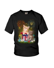 Cat Firework America Youth T-Shirt thumbnail