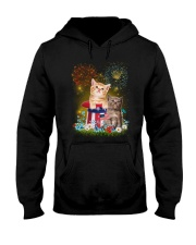 Cat Firework America Hooded Sweatshirt thumbnail