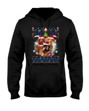 Dachshund Family Xmas Phoebe 018 Hooded Sweatshirt thumbnail