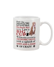 American Pit Bull Terrier Crazy Funny Mug front