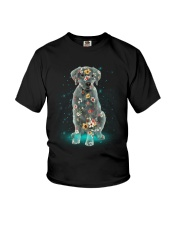 Phoebe - Labrador Retriever - 12418 Youth T-Shirt thumbnail