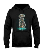 Phoebe - Labrador Retriever - 12418 Hooded Sweatshirt thumbnail