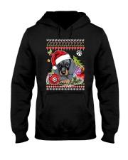 Dachshund Christmas Phoebe 018 Hooded Sweatshirt front
