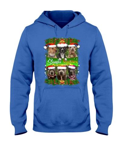 PHOEBE - American Pit Bull Terrier Buddies - 27