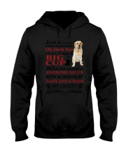 Labrador Retriever Crazy Funny Hooded Sweatshirt thumbnail