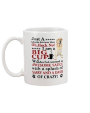 Labrador Retriever Crazy Funny Mug back