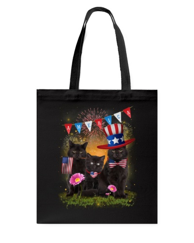 Black Cat America