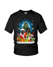 PHOEBE - English Mastiff - 1111 - B11  Youth T-Shirt thumbnail