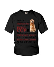 Golden Retriever Crazy Funny Youth T-Shirt thumbnail