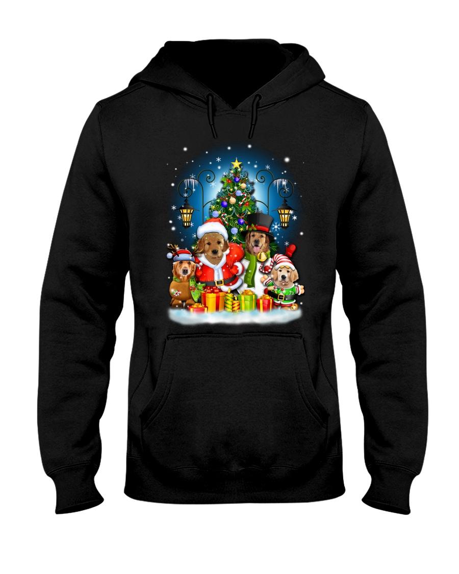 PHOEBE - Golden Retriever - 1111 - C8  Hooded Sweatshirt