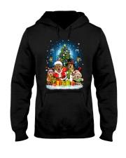 PHOEBE - Golden Retriever - 1111 - C8  Hooded Sweatshirt front