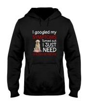 Golden Retriever Symptoms Hooded Sweatshirt thumbnail
