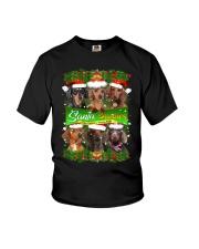 PHOEBE - Dachshund Buddies - 0510 - 28 Youth T-Shirt thumbnail