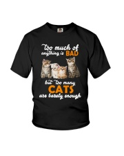 Cat Barely Enough Youth T-Shirt tile