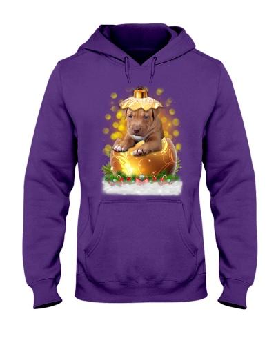 PHOEBE - American Pit Bull Terrier Ball Christmas
