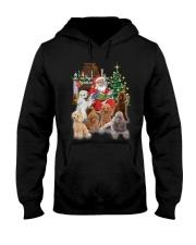 PHOEBE - Poodle - 1311 - A75 Hooded Sweatshirt front