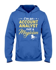 Account Analyst 2 Hooded Sweatshirt front