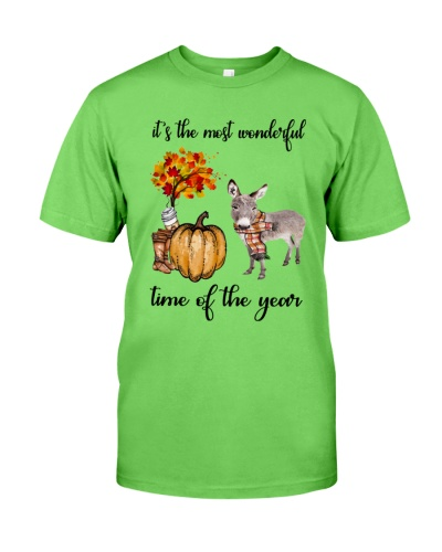 The Most Wonderful Time - Donkey