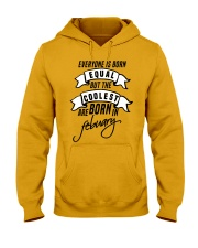 Born In Febuary Hooded Sweatshirt thumbnail