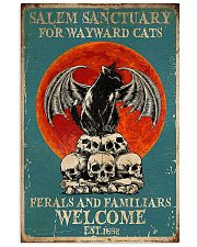 Salem sanctuary for wayward cats ferals and famili 11x17 Poster front
