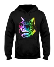 Rainbow Music Cat Hooded Sweatshirt thumbnail