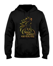 Who You Are Hooded Sweatshirt thumbnail