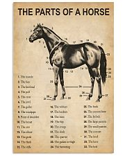 The Parts Of A Horse 11x17 Poster front