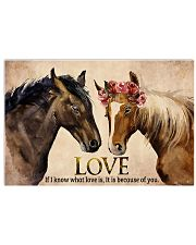 Horse Couple 17x11 Poster front