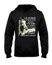 A Horse Is Not Just A Horse Hooded Sweatshirt thumbnail