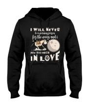 In Love Hooded Sweatshirt thumbnail