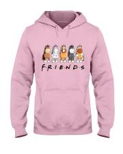 Friends Hooded Sweatshirt front