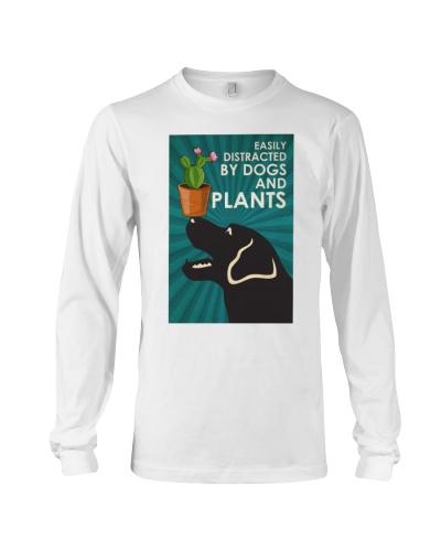 Dog Labrador And Plants