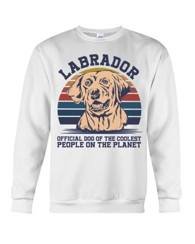 Dog Labrador Schnauzer People On The Planet