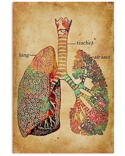 Lung Trachea Air Sacs