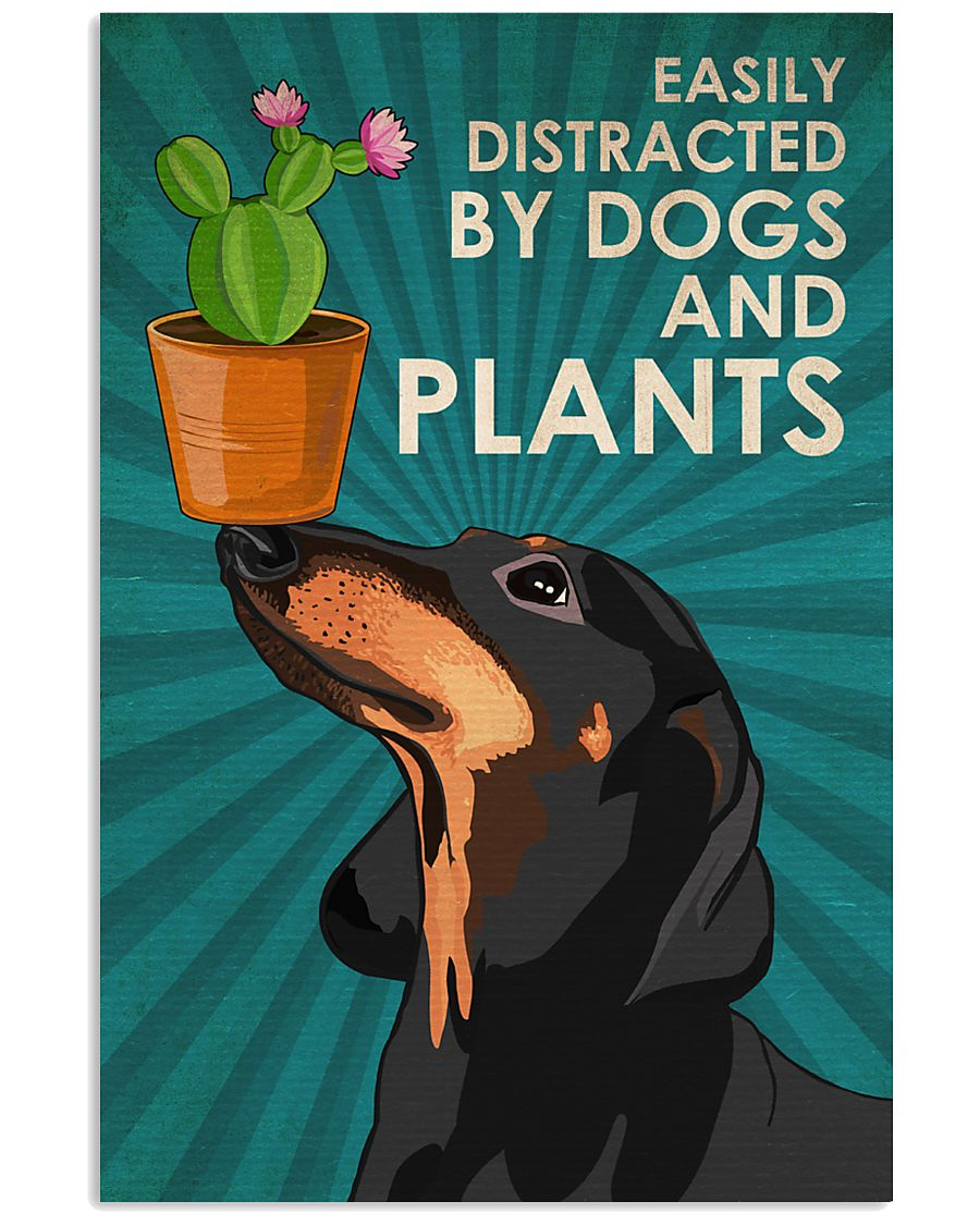 Dog Dachshund And Plants 11x17 Poster