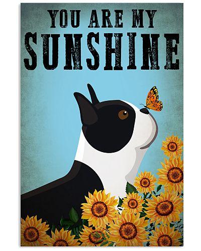 Dog Boston You Are My Sunshine