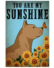 Dog Pitbull You Are My Sunshine 16x24 Poster front