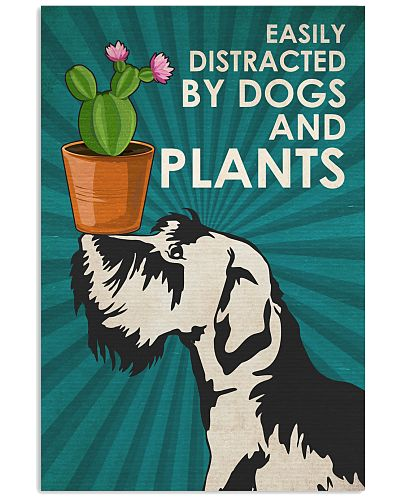 Dog Schnauzer And Plants