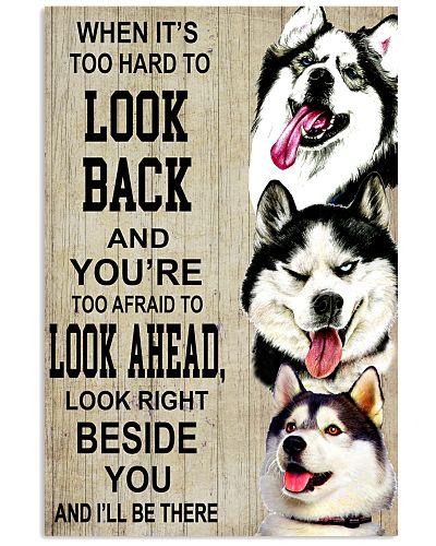 Dog Husky Look Ahead
