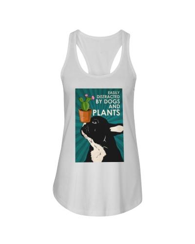 Dog Boston And Plants